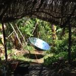 Las Plantas y la cocina solar de alimentan de energía de la misma fuente.